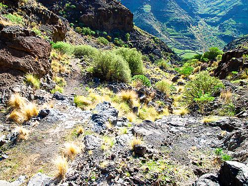Blick hinunter in das Tal von Tasartico